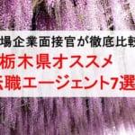 栃木県のオススメ転職エージェント&2019年正社員求人数を徹底比較!