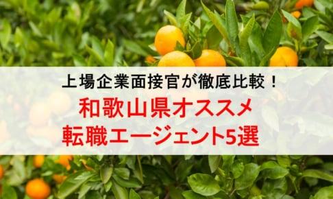 和歌山県のオススメ転職エージェント&2019年正社員求人数を徹底比較!
